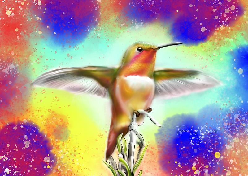 Hummingbird1.png