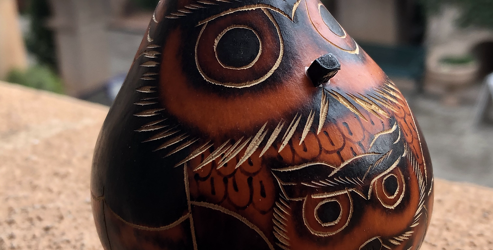 Peruvian Gourd Art with carved Mother& Baby Owl