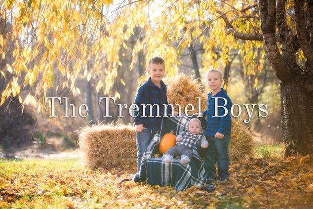 The Tremmel Boys.jpg