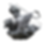 SG-APP-MULTIMEDIA-wix.png