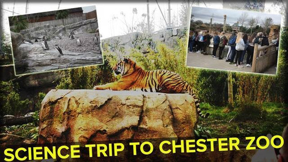 Chester Zoo Science Trip