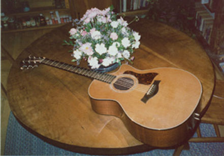 Taylor_guitar-72dpi.jpg