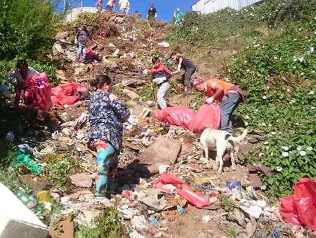 Exitosa jornada de limpieza participativa en Quebrada Parque