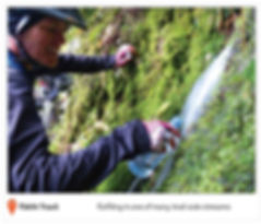 journal-photos4_web-low.jpg