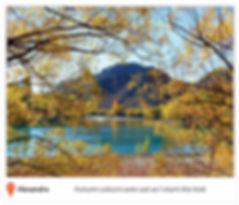 journal-photos_web-low.jpg