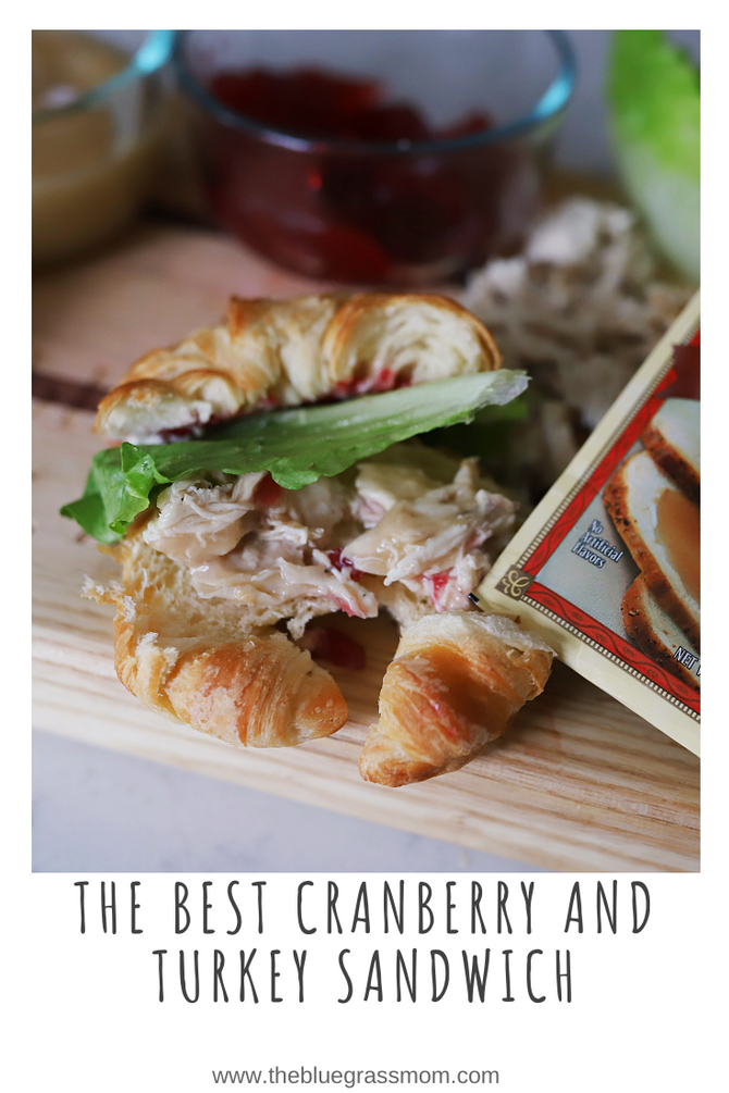 The Best Cranberry and Turkey Sandwich