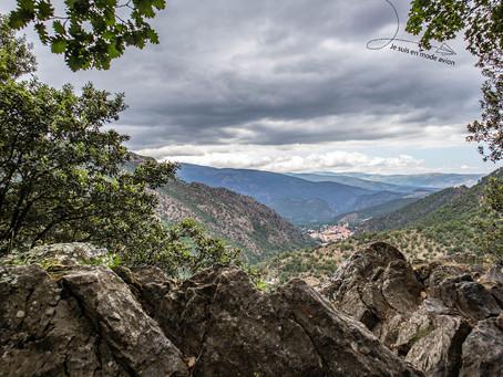 Pyrénées Orientales, LEU et PGF: 7