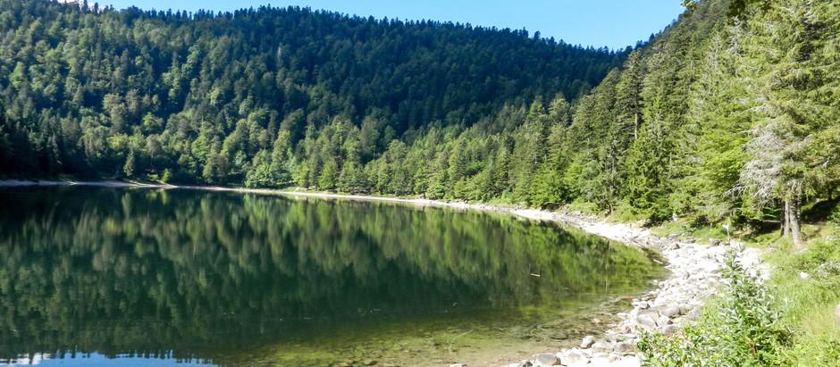 Escale éphémère : Les Vosges 3