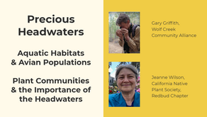 MineWatch June Meeting 2021 - Precious Headwaters