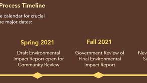 Understanding the Process Timeline