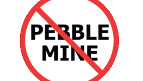 How They're Beating Pebble Mine