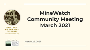 MineWatch March Meeting 2021