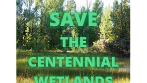 CEA Comments on Centennial Cleanup Plan