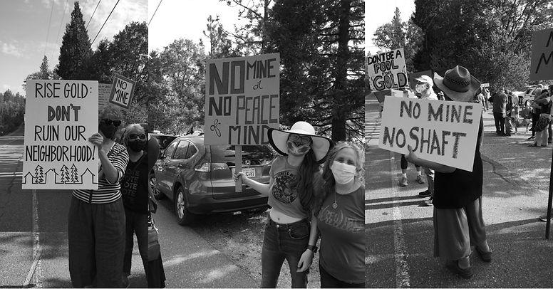 protest header bw.jpg