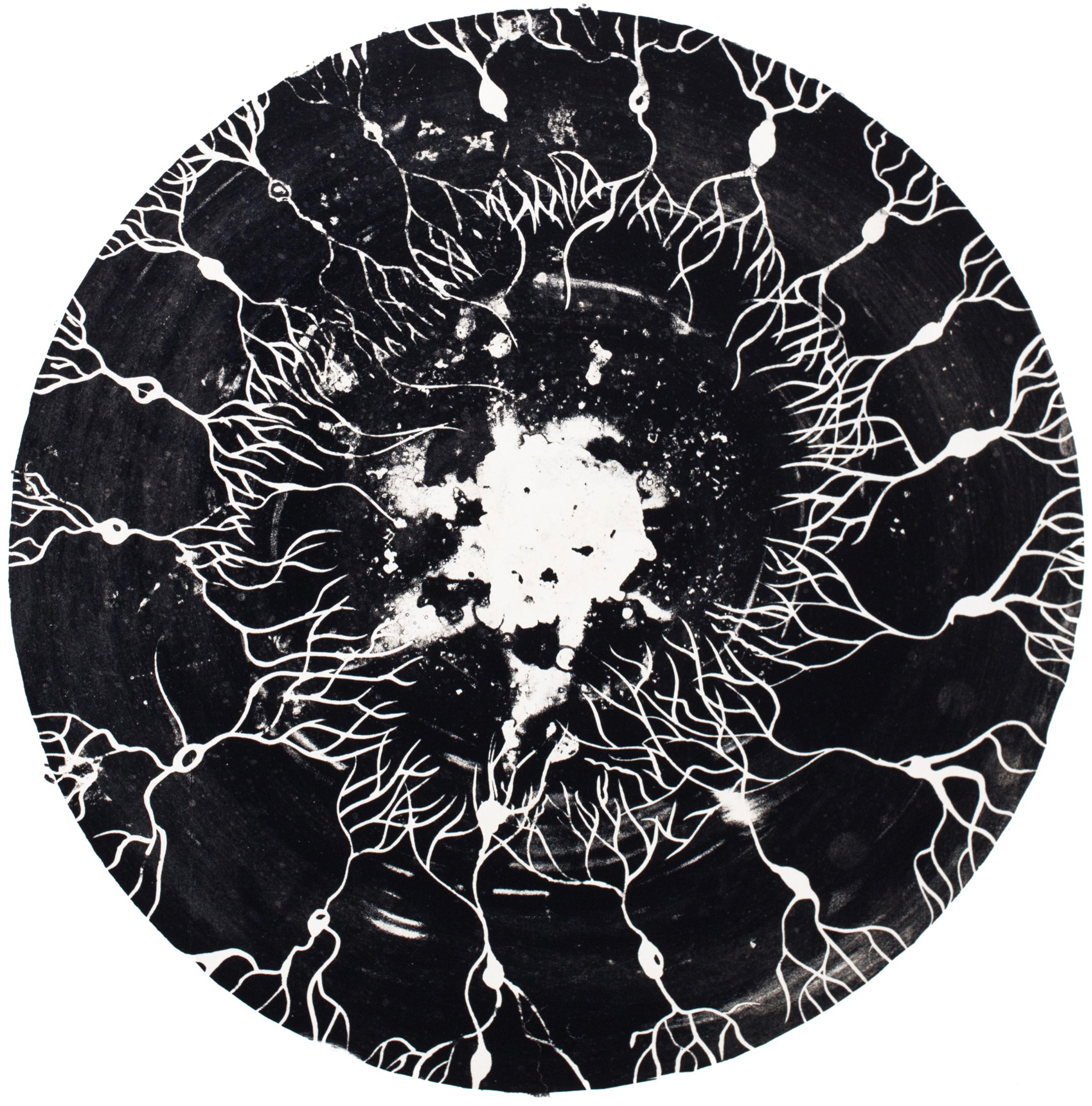 Matrice Cosmos