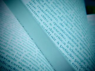 Linguagem, Organização do Conhecimento e Luta Social:  um glossário na trincheira da Iugoslávia