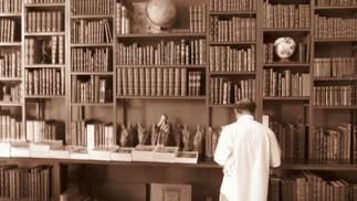 É HISTÓRICA A INFORMAÇÃO? CARTAS A UM VENDAVAL: ou preâmbulos diltheyanos a uma epistemologia histór