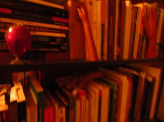 Briet, aquela que nunca viu um antílope: ainda sobre as movimentações neodocumentais