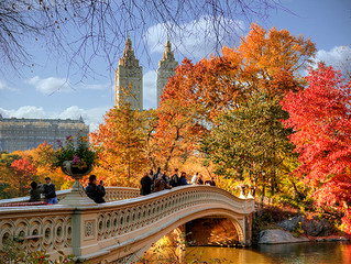 WELCOME NOVEMBER WITH A FREE TOUR AROUND CENTRAL PARK