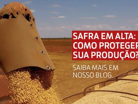 Safra de grãos em alta: como proteger sua produção?