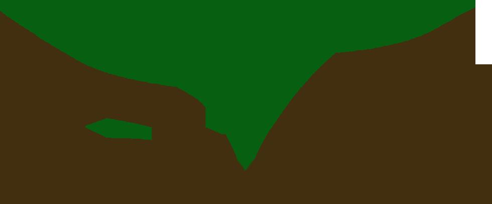 rootedlogocolor.png