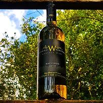 Winbirri Vineyard | Bacchus 2019 | English Wine | English White Wine