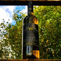 Winbirri Vineyard | Bacchus 2019 | English Wine | White Wine