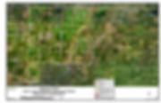 NLWID_Figure3_WatercourseClassifications