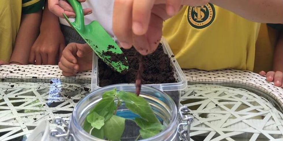 Büyü Bitki Workshop 6 Haziran