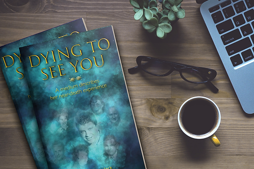 Dying to See You Paperback