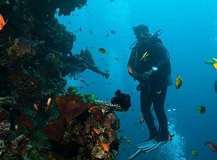 amed-dive-center.jpg