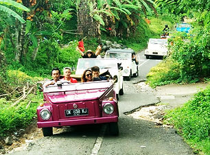 Ubud-VW-Tour-1.jpeg