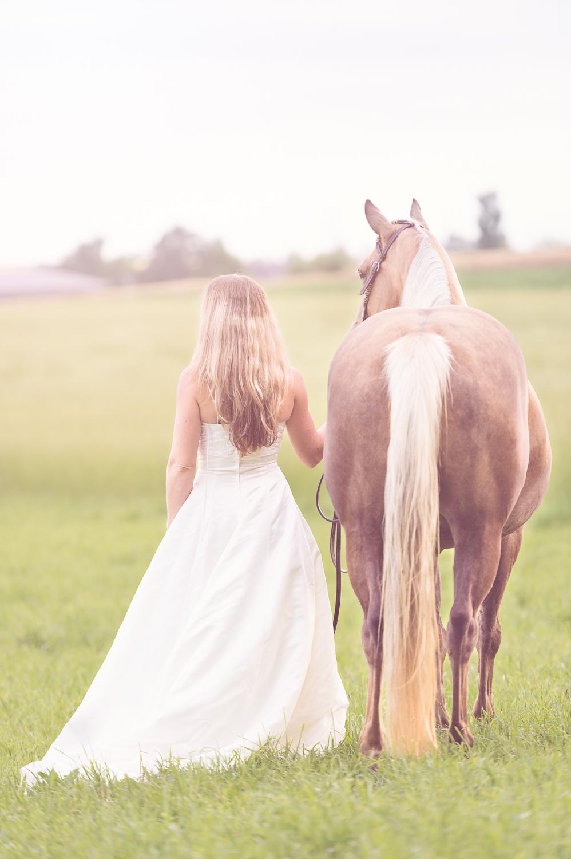 Horse bridal gown bride