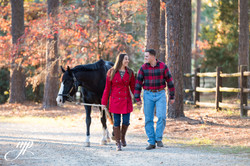 engagement couple walking with horse