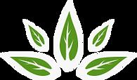 logo-slamr.png