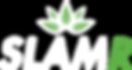 Logo-tekst-(vector)-light.png