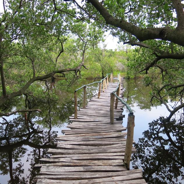 Lago de Maya