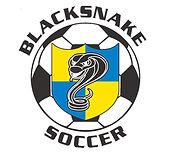 BLACKSNAKE_LOGO_2014_jpg_image.jpg