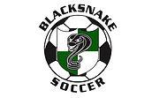 Blacksnakes logo 21 JPG.jpg