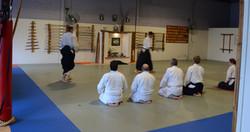 Aikido (1)_edited