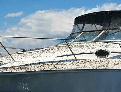 boot zonder krimpfolie