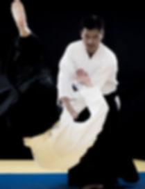 aikido_kokikai_allen_sensei 2.jpg