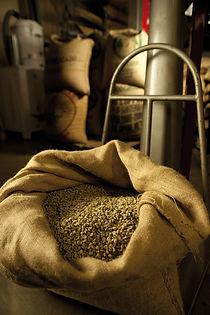 Modena coffee roaster