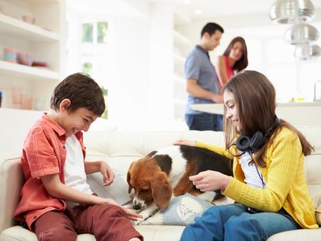 UN PERRO: UN COMPROMISO FAMILIAR