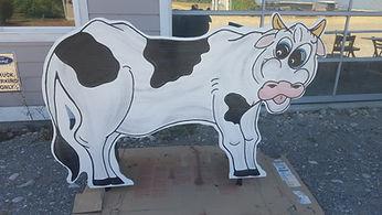 New Cow.jpg