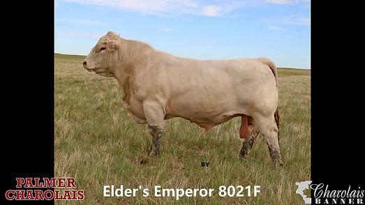 Elder's Emeror 8021F