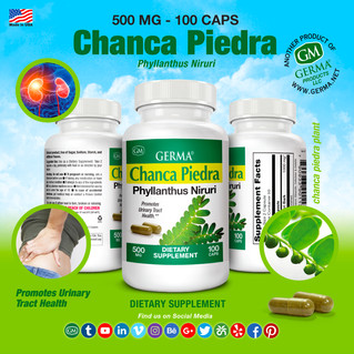 Chanca Piedra - 100 caps