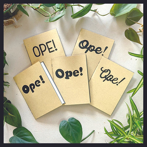 """""""Ope!"""" Series - Pamphlet Stitch"""