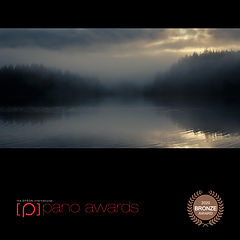2020-Epson-Pano-Awards-Score-Open Awards