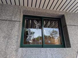 復興公園廁所玻璃改善後02.jpg